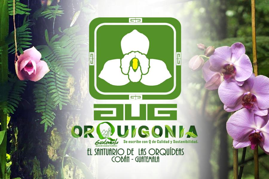 Orquigonia El Santuario de Las Orquideas de Guatemala