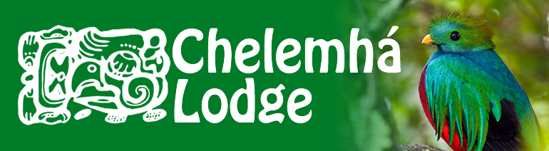 Chelemha Lodge