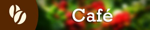 Empresas productoras de Café en las Verapaces